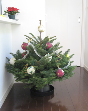 IKEAtree.jpg